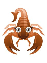 le signe zodiacal du Scorpion